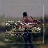 """سلسله واکاوی های مسائل اجتماعی ایران؛ """"بخش چهاردهم"""": محرک گُل"""